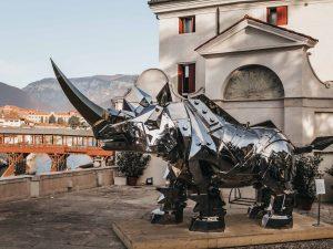 "Il ""King Kong Rhino"" di Li-Jen Shih esposto a Bassano"