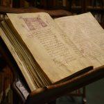 Studio ESSECI - LA NUOVA PILOTTA. Biblioteca Palatina 4